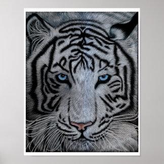 White Tiger - Casper Posters