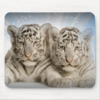 White Tiger Cubs Mouse Pad
