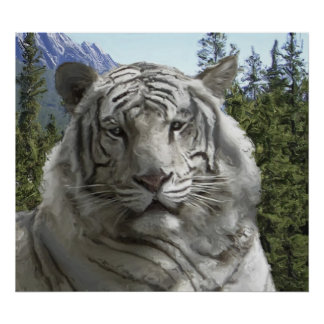 WHITE TIGER in its FOREST HABITAT Print
