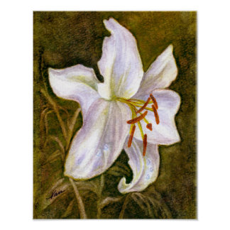 White Tiger Lily Poster