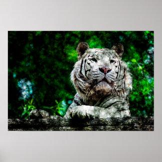 White Tiger Mixed Media Poster