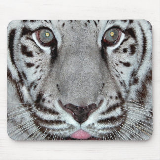 White Tiger Mouse Mats