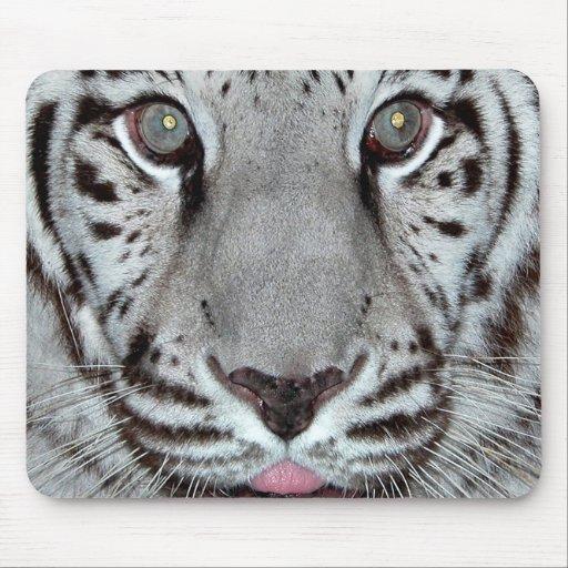 White Tiger Mouse Mats
