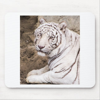 White Tiger Mouse Pad