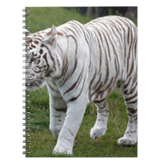 White Tiger Notebooks