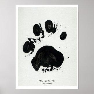 White Tiger Paw Print Poster