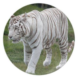 White Tiger Plate