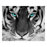 White Tiger Poster Eyes