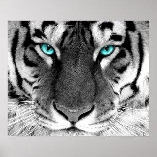 White Tiger Poster Eyes