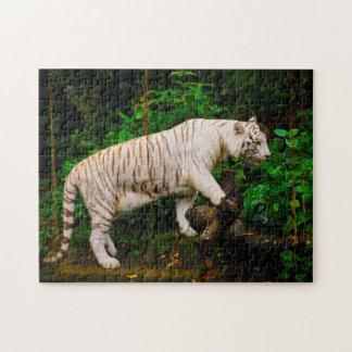 White Tiger Singapore. Jigsaw Puzzle