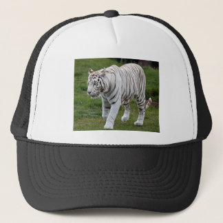 White Tiger Trucker Hat