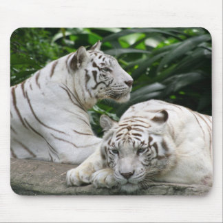 white tigers mousepads