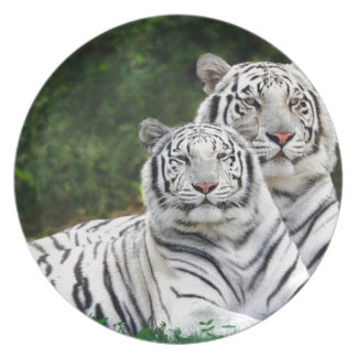 White Tigers Party Plates