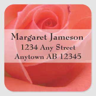 White Tipped Pink Rose Wedding Return Address Square Sticker