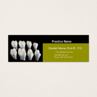 White Tooth Dentists Appointment Care Mini Business Card