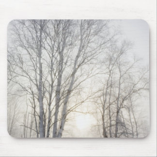 White Trees on a Snowy Day Mouse Pad