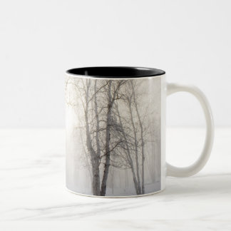 White Trees on a Snowy Day Two-Tone Mug