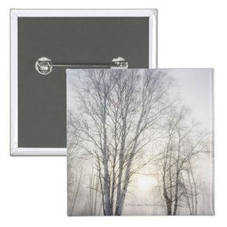 White Trees on a Snowy Day Pinback Button