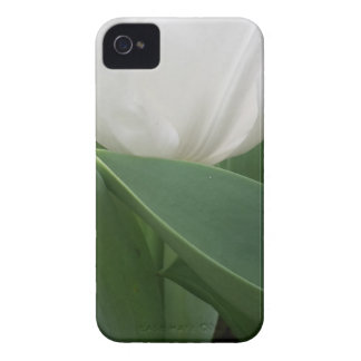 White Tulip iPhone 4 Cover