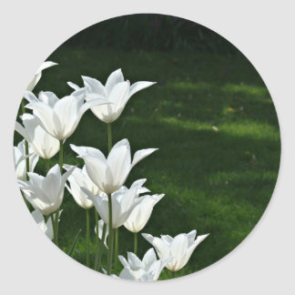 White tulip Wedding sticker