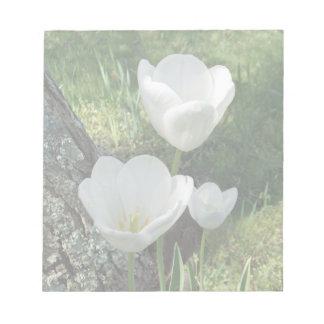 White Tulips Flower Trio Notepads