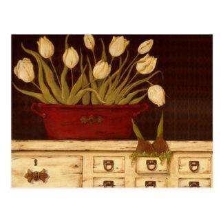 white tulips postcards