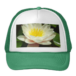 White Water Lily Flower Cap