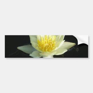 White Water Lily/Lotus Bumper Sticker