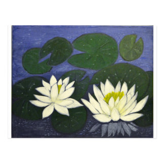 White Waterlily Flowers, Acrylic painting Postcard