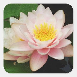 White Waterlily/Lotus Flower Sticker