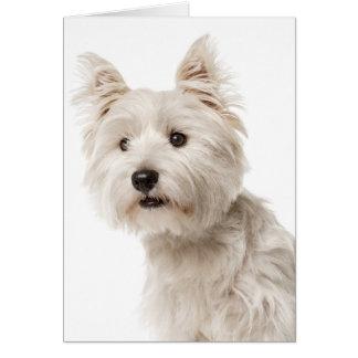 White West Highland Terrier Puppy Dog Hello Love Card