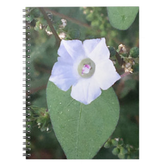 White wild flower spiral notebook