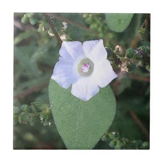 White wild flower tile