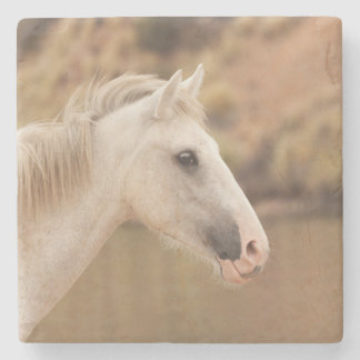 White wild horse stone coaster