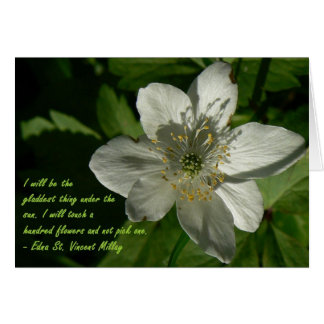 White Wildflower Edna St Vincent Mallay Card