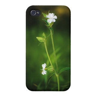 White Wildflower Glossy Finish Case for iPhone 4