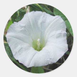 White Wildflower Sticker