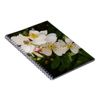 White Wildflower Themed Journal Note Books