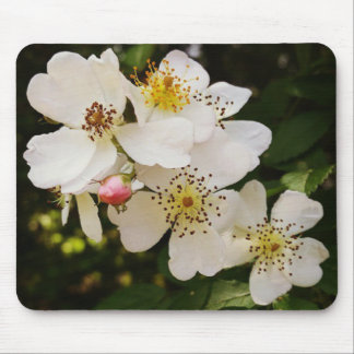 White Wildflower Themed Mousepad