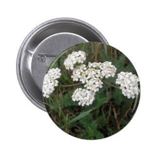White Wildflowers Button