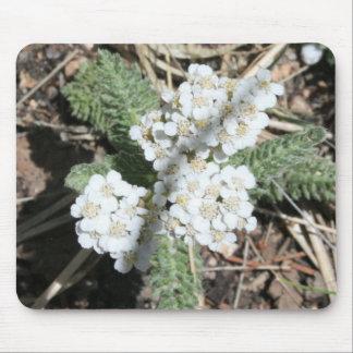 White Wildflowers Mousepad