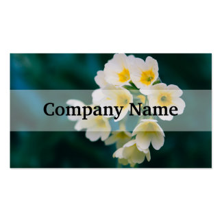 White Wildflowers On A Teal Background Double-Sided Standard Business Cards (Pack Of 100)