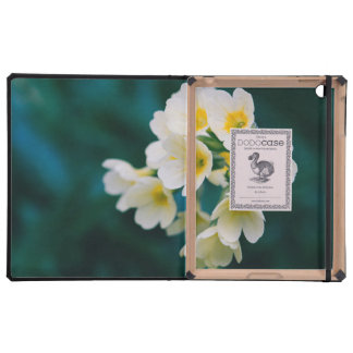 White Wildflowers On A Teal Background iPad Cases