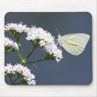 White Winged Wonder Mouse Pad