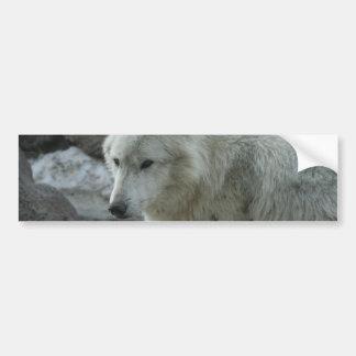 White Wolf Bumper Stickers