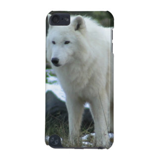 White Wolf in Winter iPod Touch (5th Generation) Cases