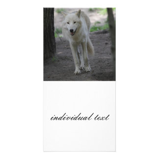 white wolf personalised photo card