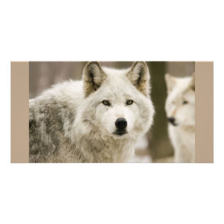 White Wolf Customized Photo Card
