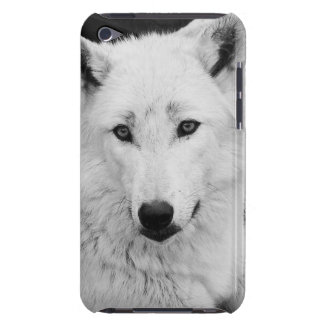 White Wolf Photograph Case Mate iPod Touch Case
