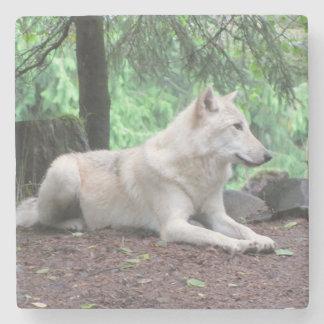 White Wolf Stone Coaster